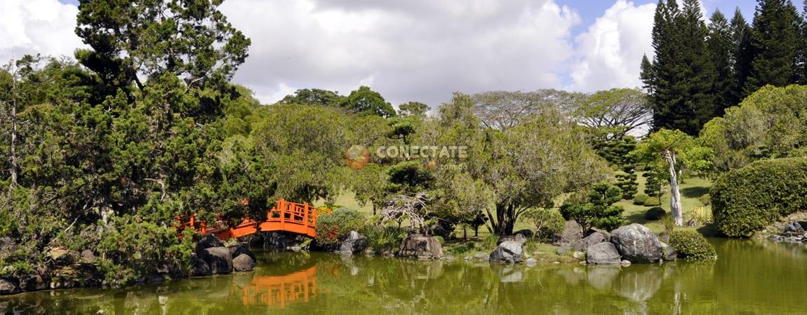 Jard n bot nico nacional santo domingo rep blica for Jardin botanico nacional